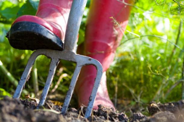 garden-work