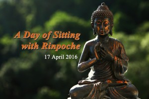 sitting_rinpoche
