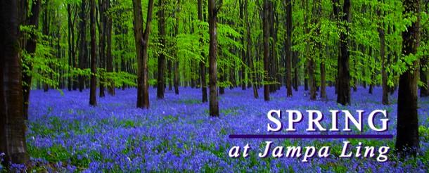 jl_spring