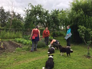 Community Gardening 2