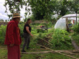 Community Gardening 3